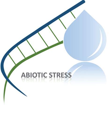 HRM Dissertation Stress Management Work Related Stress